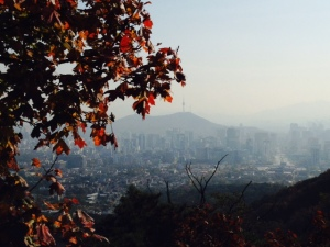 Red leaves with Seoul Tower in background