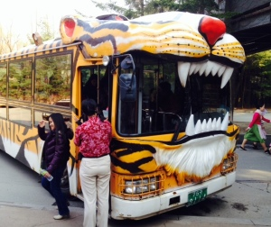 Safari ride bus