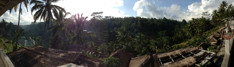 View from coffee plantation