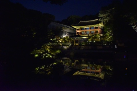 Day 3: Changdeokgung Palace 창덕궁 Moonlight Tour. Beautifully-lit palace.