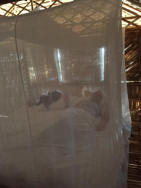 Mosquito netting around the bed