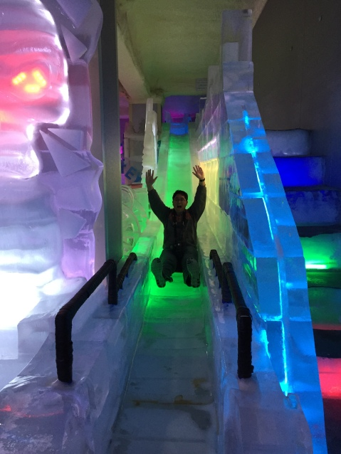 Ice Museum slide