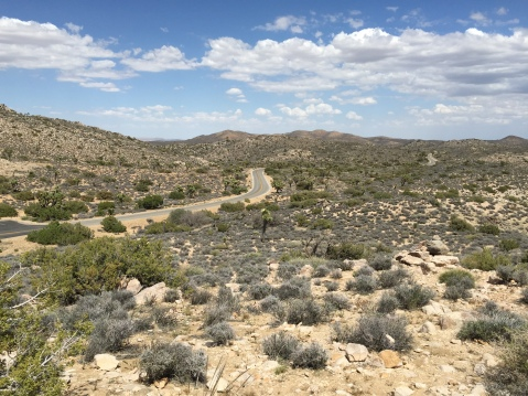 Our scenic drive through Joshua Tree National Park